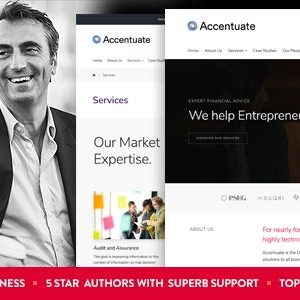 JUAL Accentuate - A Professional Consulting WordPress Theme