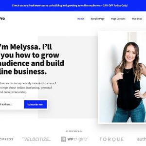 JUAL Authority Pro Theme Package