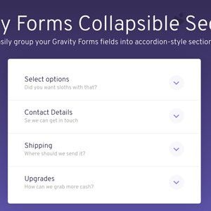 JUAL Gravity Forms Collapsible Sections Add-On