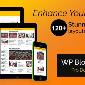 JUAL WP Blog and Widgets Pro By WpOnlineSupport