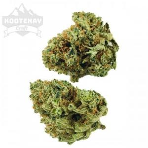 Hawaiian Haze (70 Sativa, 30% Indica, 24%+ THC)