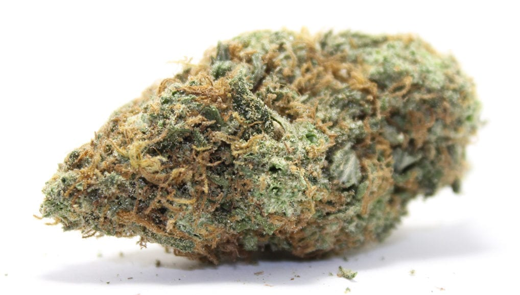 New York Diesel Wholesale Dispensary Review Cheapweed.ca