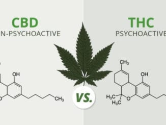 CBD and THC compared with molecules