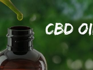 CBD OIL explained featured image