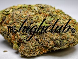 black nuken featured image from thehighclub.ca