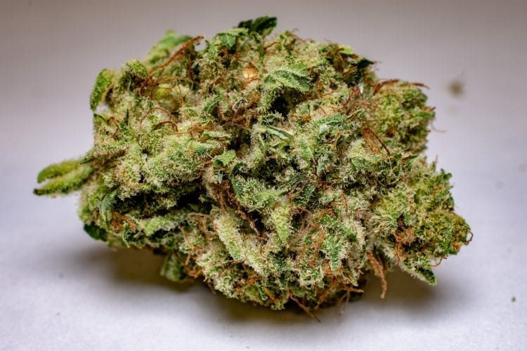 Fruity Pebbles Buy My Weed Online Review