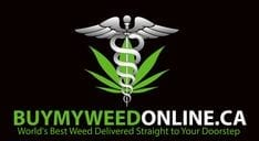 buymyweedonline review