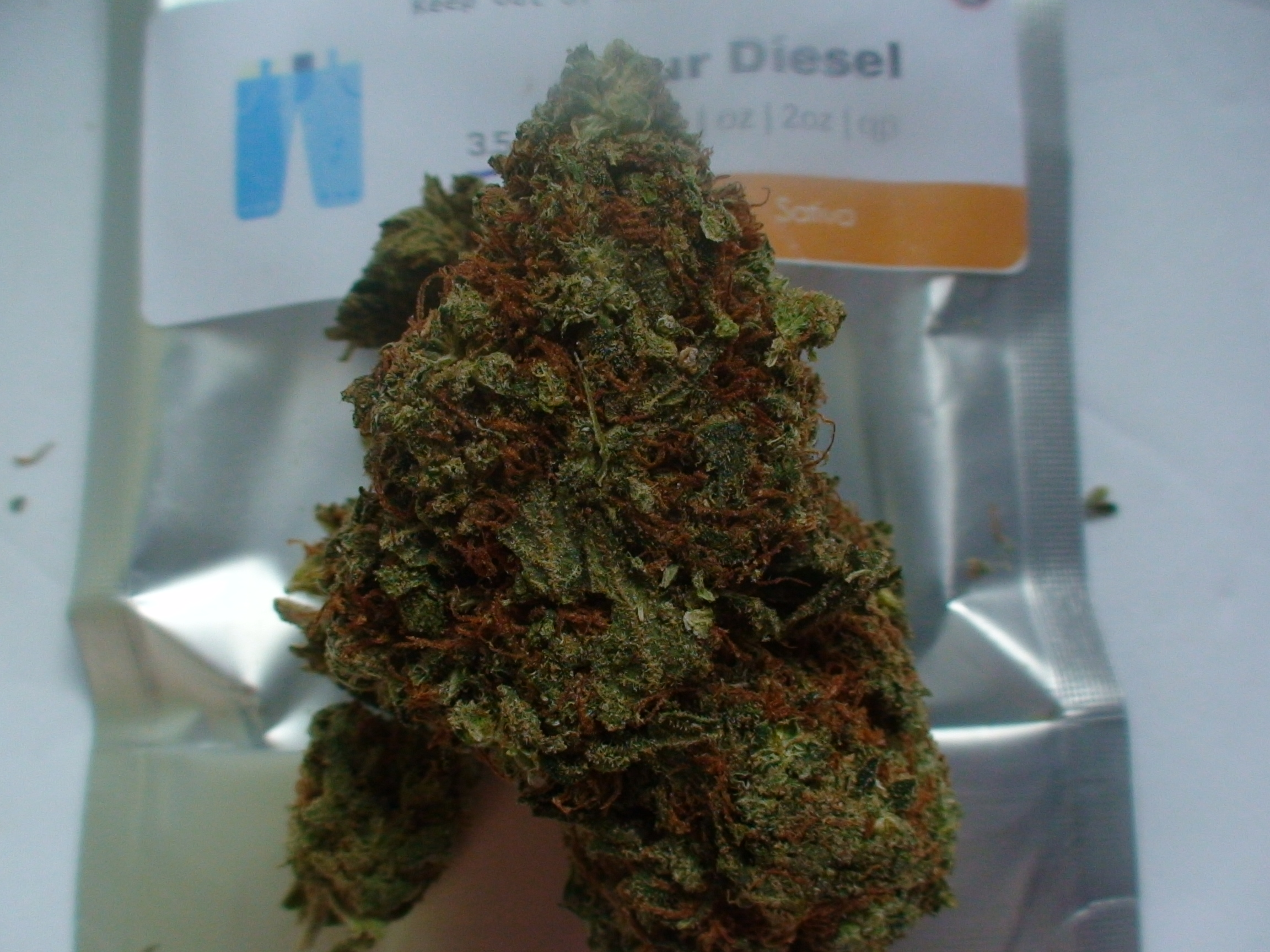 sour disel flower