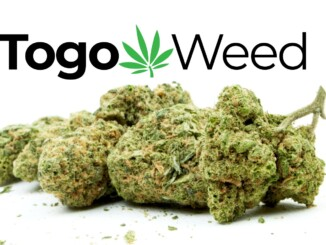 togoweed review bud and logo