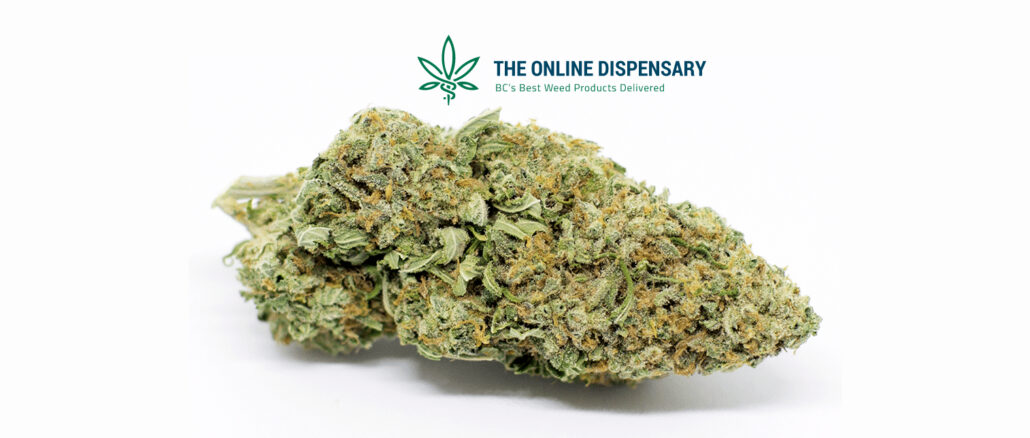 the online dispensary