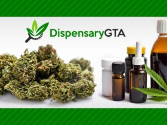 DispensaryGTA homepage image to the left of text