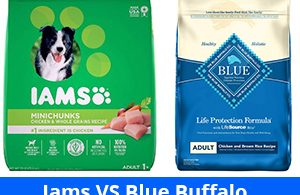 Iams VS Blue Buffalo