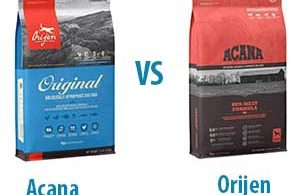 Acana vs Orijen: Let's Compare the Best for Your Dogs!