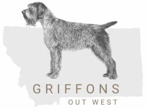 Griffons Out West logo