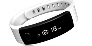Intex fitrist review