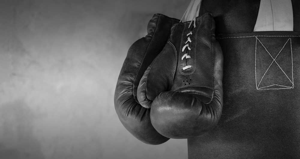Linux versus Linuxsers of the Linux vs. Linux rumble are outside of the ring. [shutterstock: 525274621, Ramilon]