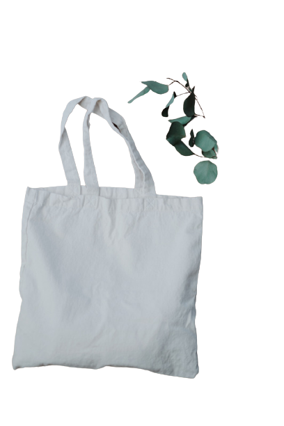 eco brothers eco bags