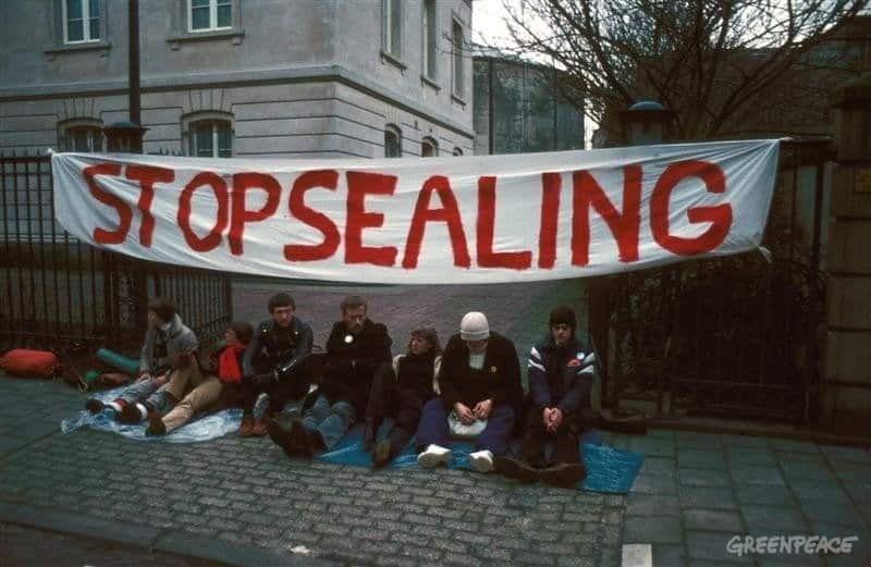 Sit-in against Seal Hunt in front of Canadian Embassy