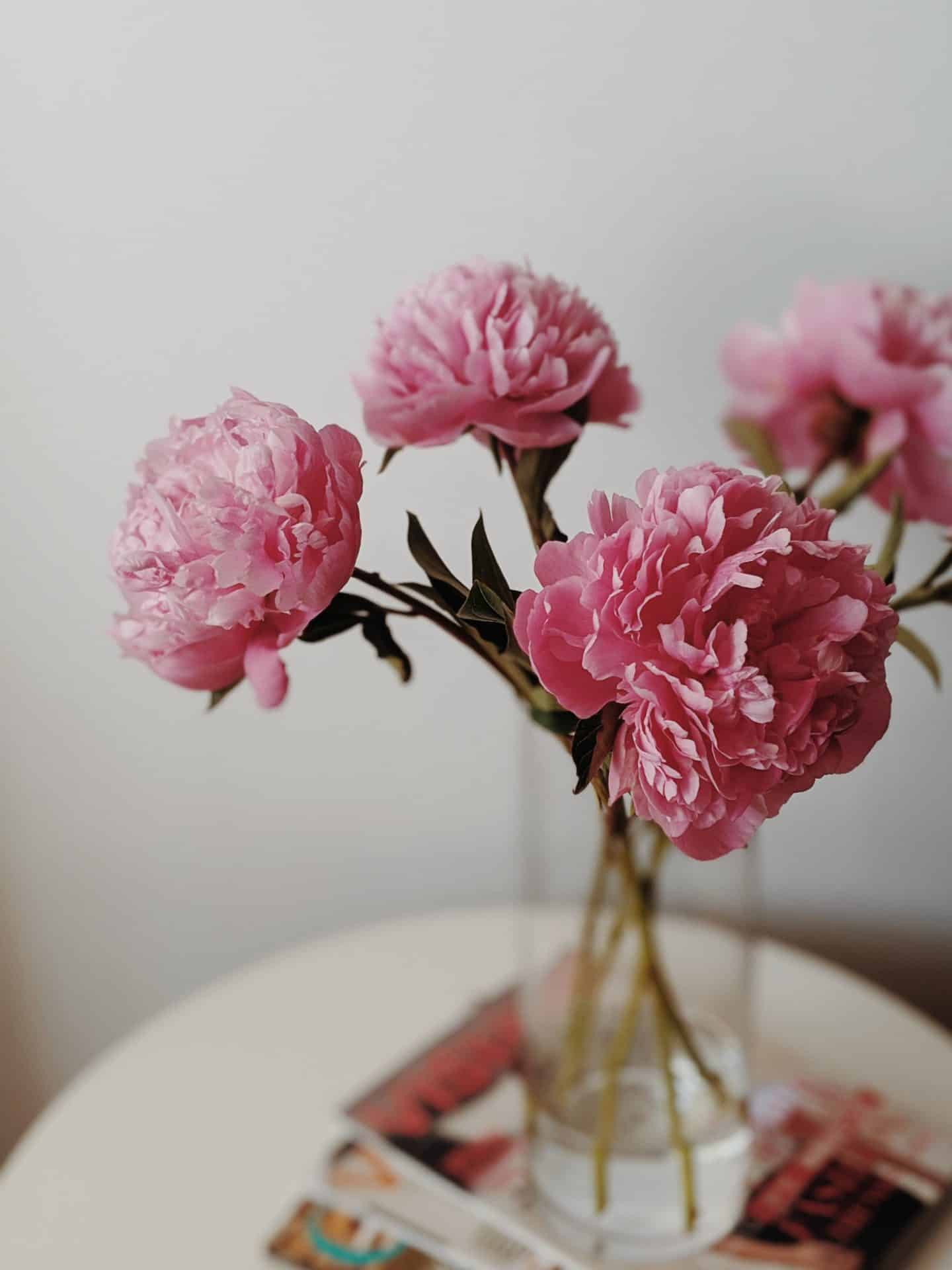 decorating with plants - pink peonies