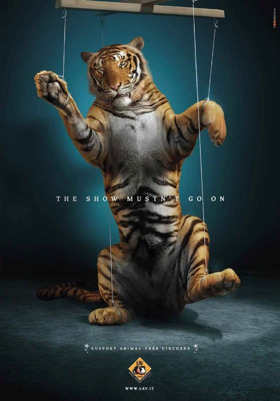 20 Powerful Adverts To Save Animals