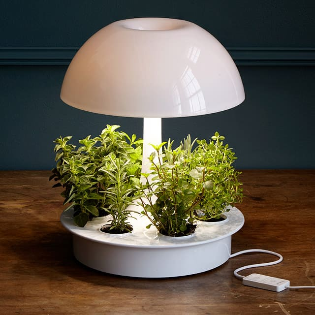 Eco Friendly Design Objects