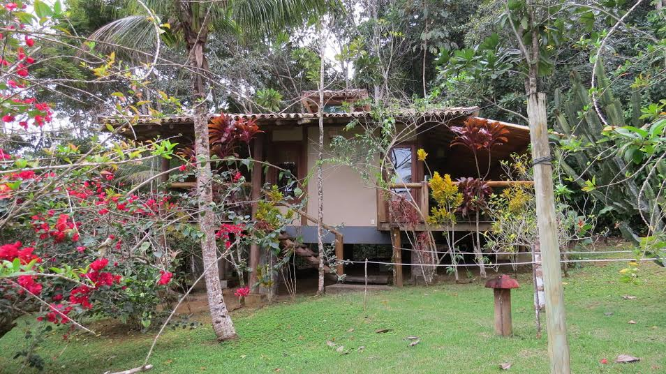 Best Ayahuasca Retreats