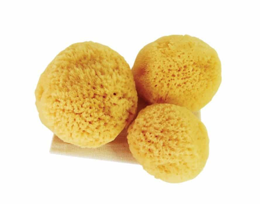 natural menstrual sponges