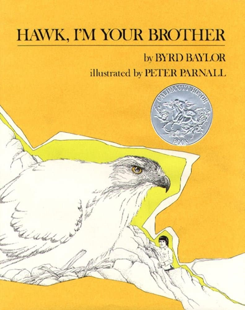 hawk i'm your brother book