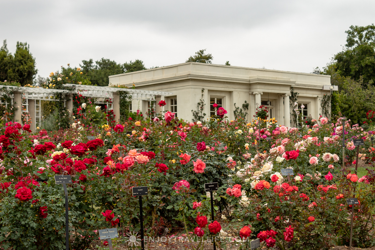 The Tea Room at The Huntington Rose Garden