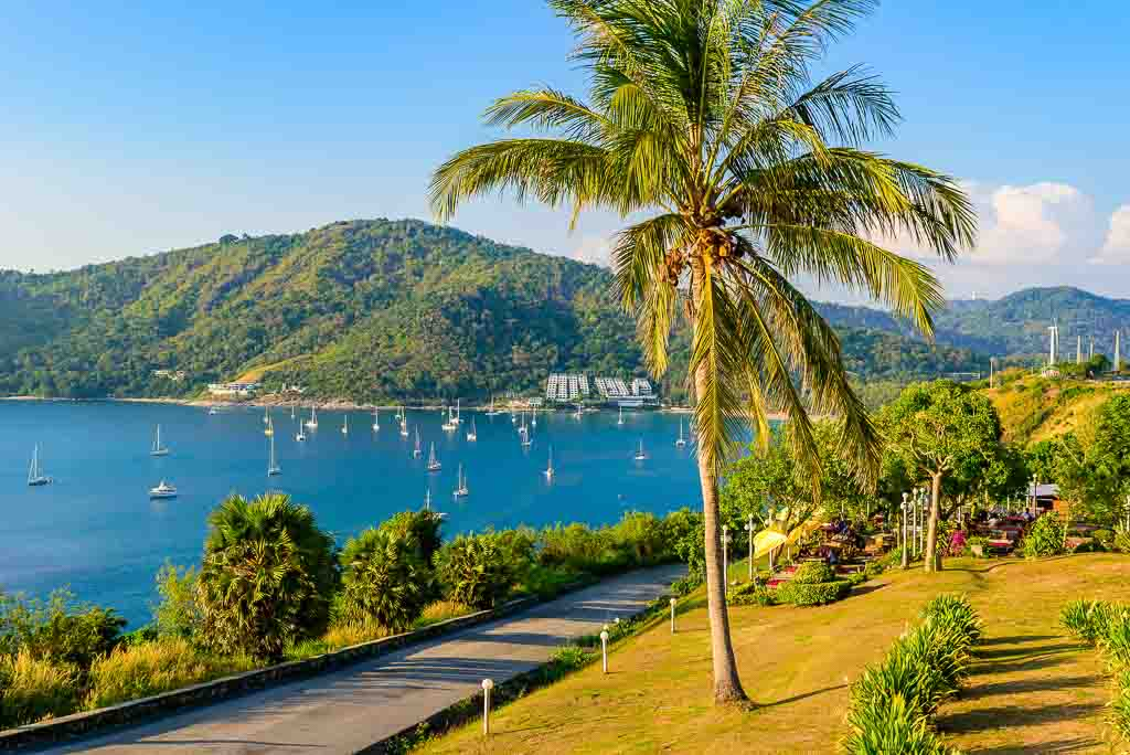 Best Place To Live In Thailand: Phuket beach and marina with palm tree