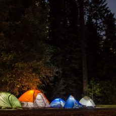 Summer Fun! Important Tips for Tent Camping Close to Home