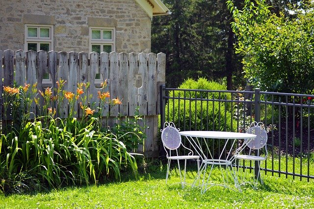 Fenced yard with white table and orange day lilies in bloom.