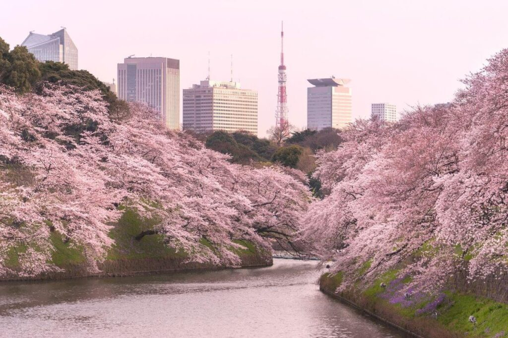 most photographed city in the world - Tokyo Japan