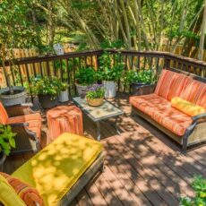 Your Backyard Paradise – How to Create A Tropical Retreat at Home