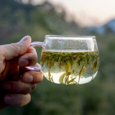 Tea Culture: Which Do You Think is the Best Tea From Around the World?