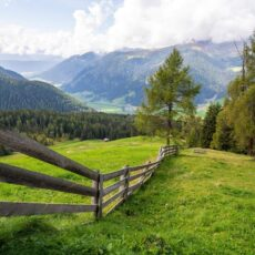 Summer Vacation in the Mountains: 5 Compelling Reasons You Should Do It!