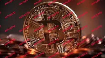 Cryptocurrency Course Learn to Make Money Online WORLDWIDE