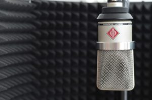 Microphone with vocal deflector.