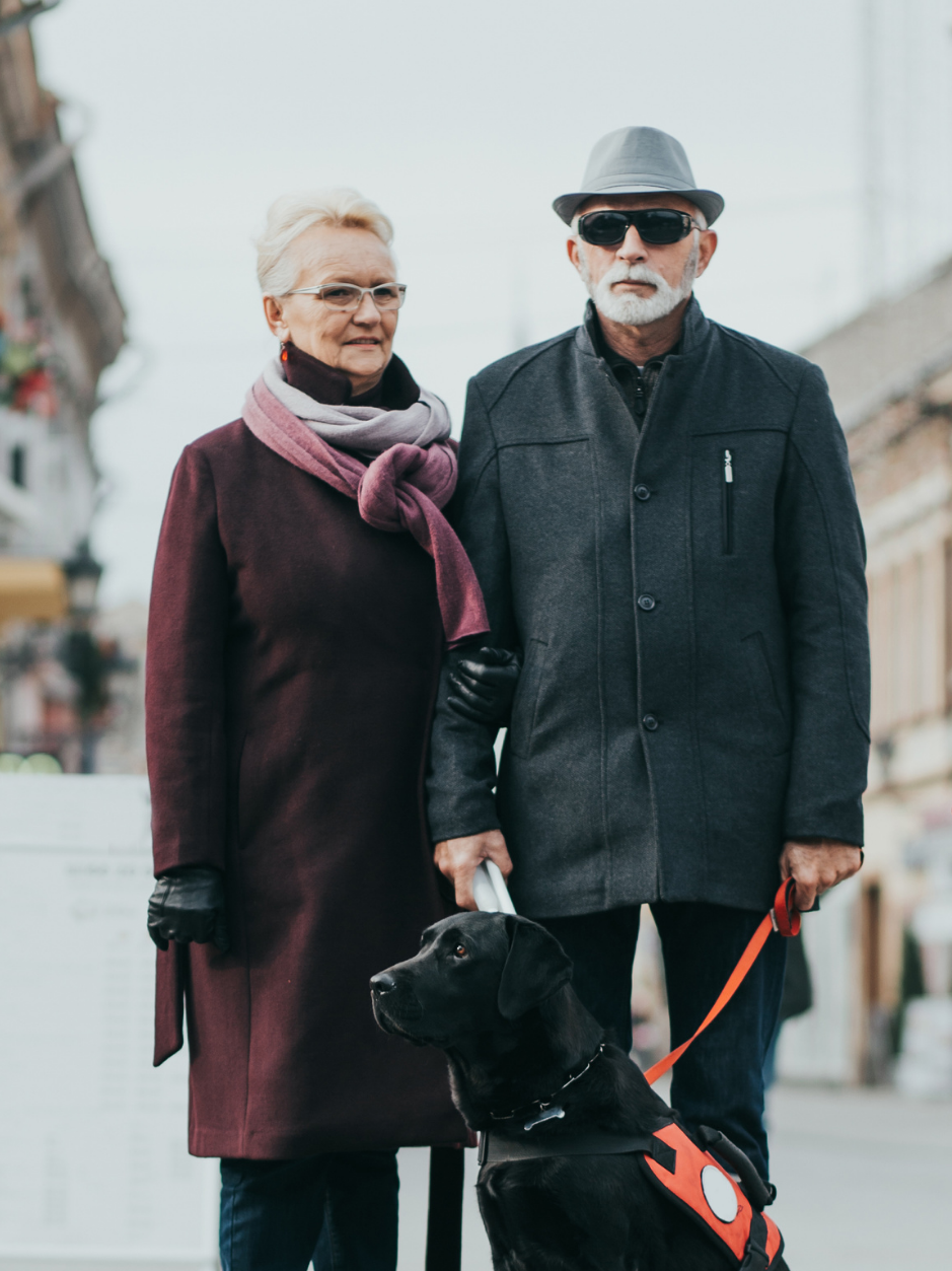 elderly couple walking in the city with a support animal