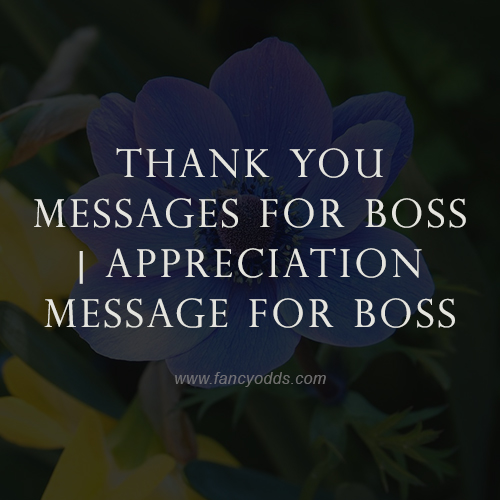 Thank You Messages For Boss | Appreciation Message For Boss