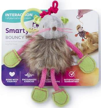 SmartyKat Bouncy Toy Review