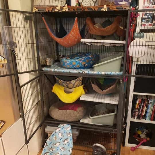 How much is a cage for a ferret?