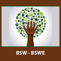 BSW Solved Assignments