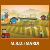 MARD- Solved Assignments