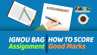 IGNOU-BAG-Assignment-how-to-score-good