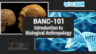 Photo of Ignou BANC-101 Study Material | Download Ignou book BANC101 in Pdf
