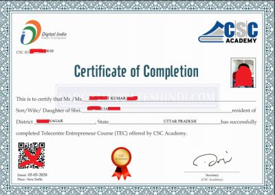 After passing the Telecentre Entrepreneur Courses TEC check the interface of the certificate.