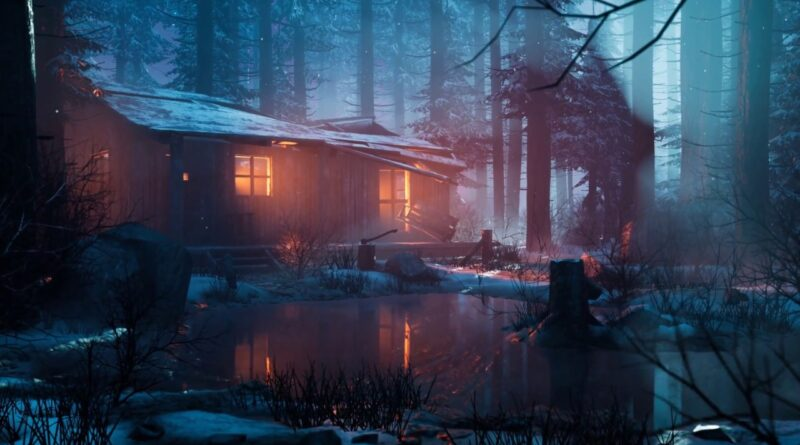 Speed Environment -  Winter Forest Cabin -   Unreal Engine 4