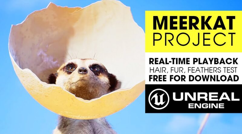 Unreal Engine 4.26 Hair, Fur & Feathers ~ Meerkat Short Film Project Testing