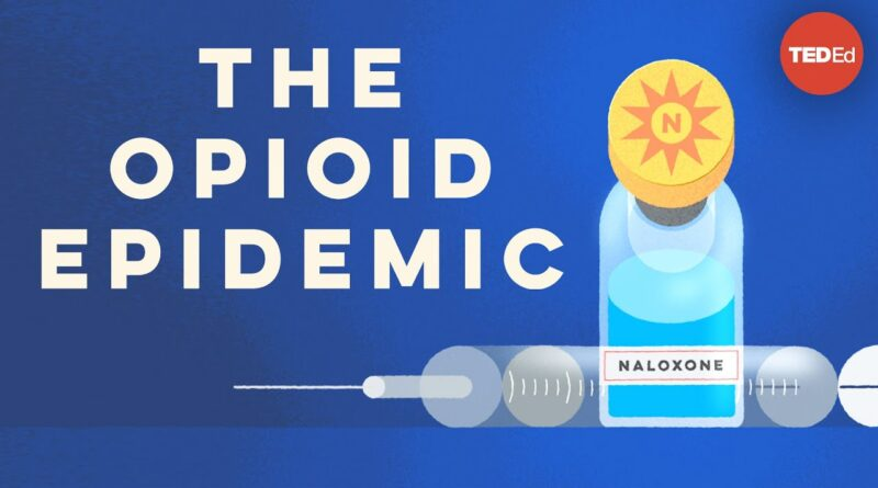 What causes opioid addiction, and why is it so tough to combat? - Mike Davis
